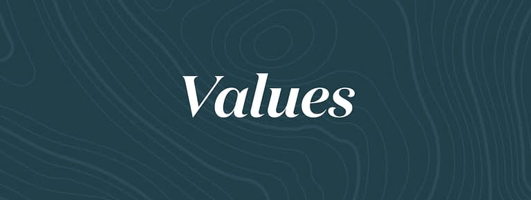 values independent marketing agency monkeytag